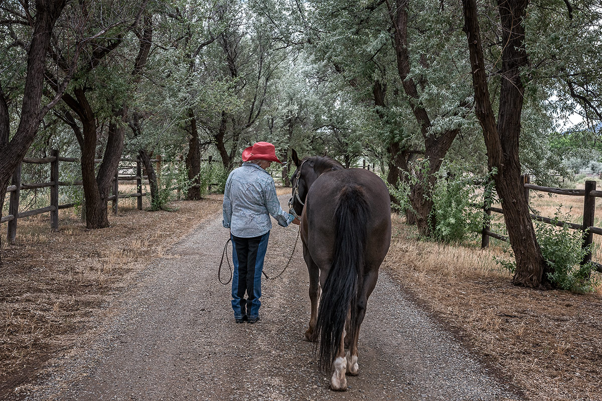 companions portrait of woman and horse strolling down country lane by Cate Goedert Santa Fe New Mexico pet photographer