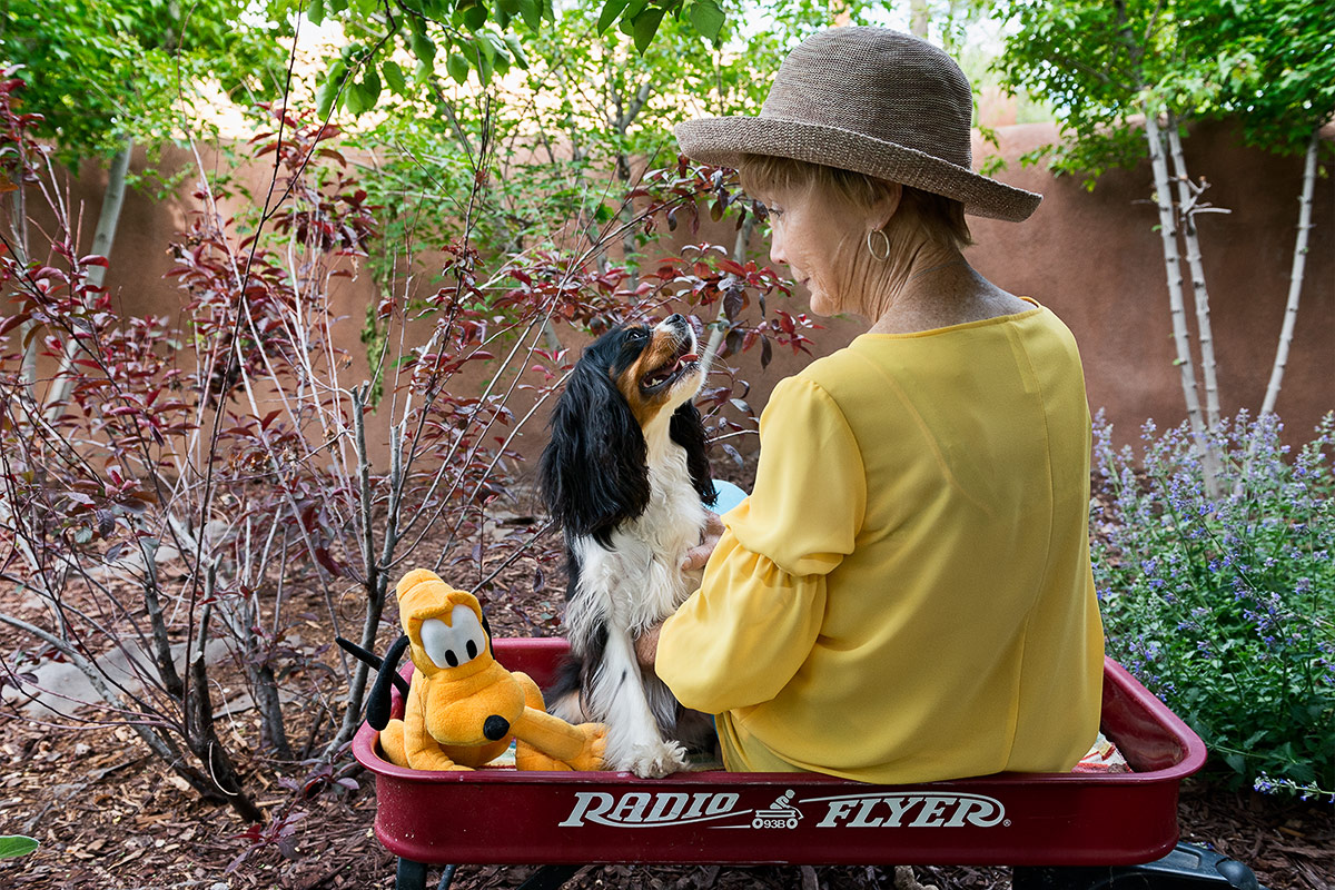 King Charles spaniel and companion in red wagon photographed by Cate Goedert Santa Fe pet photographer